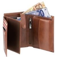 Pánská peněženka ADK Malmo hnědá